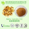 Free Sample Solvent Extract UV Tested Natural Radix isatidis extract powder