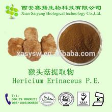 Pure Natural and Factory Supply Hericium Erinaceus P.E.