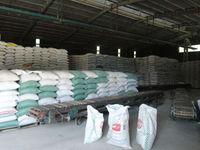 Long Grain White Rice 25% origin Vietnam