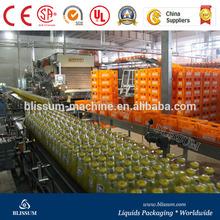 3in1 Fruit Juice Making Machine/Fruit Juice Bottling Machines/Fruit Juice Filling Machine