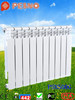 Bimetal cast iron heating radiator with best price for sale