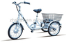 "20"" 36v250w electric bike 3 wheel for adults cargo A2-3 aluminum alloy frame"