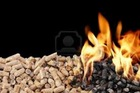 China manufacturer Wood Pellet for power plant