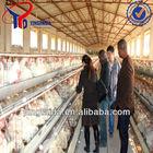 chicken layer cage farm
