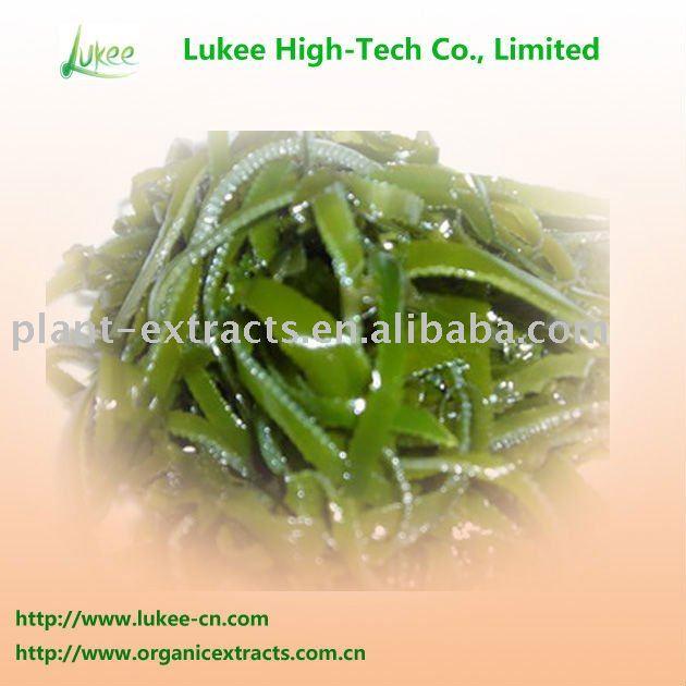 Plantas medicinales algas extracto de algas marinas