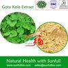 natural Gotu kola herb extract 10% 80% Triterpenes