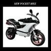 2011 New 110cc Pocket Bike (FLD-DK110)