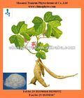Radix Pueraria root extract for health supplement isoflavones
