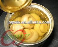 canned sliced mushroom in brine factory