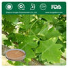 Natural Hawthorn Fruit / Leaf Extract