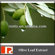 factory supply high quality olive leaf extract powder with Hydroxytyrosol