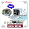 Pet Ultrasound Scanner(BW510V) reproduction imaging on bovine, equine, swine, canine,feline, ruminants,tendon, vet ultrasound