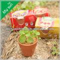 Mini flor pot set, regalo de la promoción, una tienda de dólar