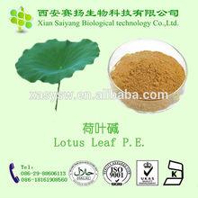 Natural Lotus Leaf P.E.