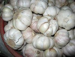Vietnam Garlic good price (skype: visimex03)