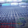 China hot dipped galvanized welded wire mesh factory