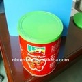 2200g banda stagnata tin cina pomodoro 28-30% produttore