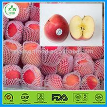 fresh Fuji apple