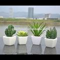 2014 nova chegada em casa mini-decorativas suculenta artificial planta atacado