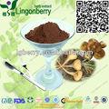 Organiques poudre de racine de maca extrait 60% macamide