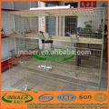 Yeni tasarım tavşan yetiştiriciliği kafesi( innaer 0086- 18731182613)