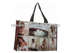 Portraiture Printing pp Laminated Eco Woven Shopping Bag