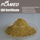 Natural echinacea extract 4%,echinacea extract powder