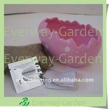 Mini Planting Gift Set