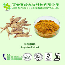 Angelica plant/herb/herbal extract 1% ligustilide