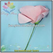 carino 2013 rosa fiori di rosa foto gratis