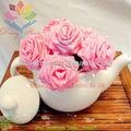 2013 Speciale decorazione floreale nome immagine fiore