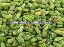 2013 Chinese New Crop Green Raisin, sweet dried raisin