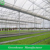 plastic greenhouse covers invernadero