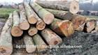 pine, oak, beech logs