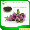 Pure Red clover extract powder/ bulk on sale/ good for women