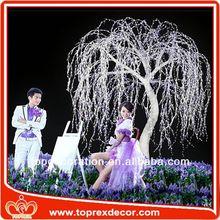 Large Outdoor princess wedding decorations