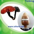 100% natürliche organische ganoderma lucidum extrakt. Natürliche luziden ganoderma extrakt-pulver