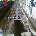 anping capa de pollo de pollos de engorde y jaula del pollo de fábrica
