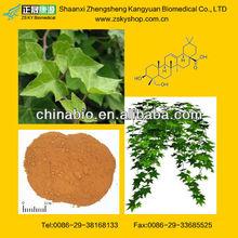 ivy leaf extrac powder with Hederagenin 3%, 5%,8%, 10%