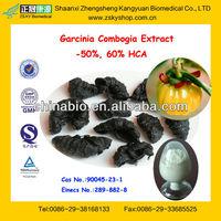 Garcinia Cambogia Extract Manufacturers, Garcinia Cambogia Extract