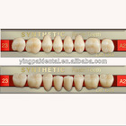 Dentures Teeth Shapes Dental Acrylic Teeth Supplies