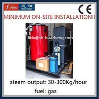 300 kg Gas Steam Boiler Prices