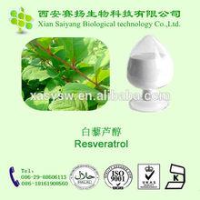 Giant Knotweed Powder Bulk Resveratrol