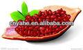 عاليةالفاصوليا الحمراء لجميع أنواع المواد الغذائية
