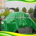 Verde la lona del pe, lona de plástico para las hojas de cubierta del coche