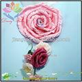 heliconia de flores para decoração de casa