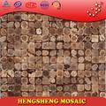 cinese foshan guscio di noce di cocco naturale grezzo colore decorazione della parete del mosaico fornitore arte cucina
