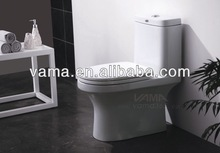 Competitive S/P-Trap 3L/6L One Piece Toilet Parts
