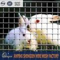 zincato saldato rete metallica per coniglio gabbia