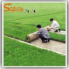 Selling buffalo grass cheap plastic grass carpet chinese artificial grass